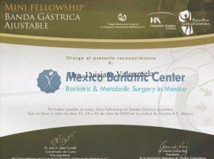 Dr Valenzuela - Mini Fellowship Banda Gastrica
